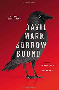 Sorrow Bound: A Detective McAvoy Novel