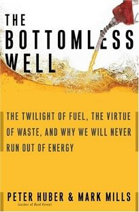 Nonfiction Book Review The Bottomless Well The Twilight Of Fuel The Virtue Of Waste And Why