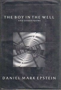 The Boy in the Well: And Other Poems