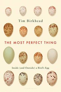 The Most Perfect Thing: Inside and Outside a Bird's Egg