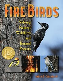 Fire Birds: Valuing Natural Wildfires and Burned Forests