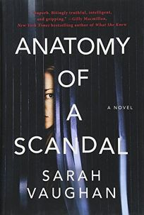 https://www.goodreads.com/book/show/34466492-anatomy-of-a-scandal?from_search=true