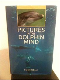 Pictures in the Dolphin Mind