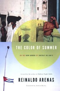 Color of Summer