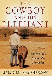 Elephant and Cowboy