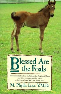 Blessed Are the Foals