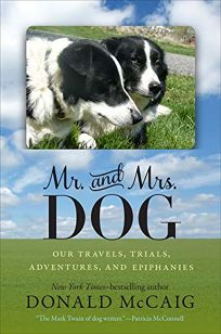 Mr. and Mrs. Dog: Our Travels