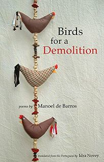 Birds for a Demolition