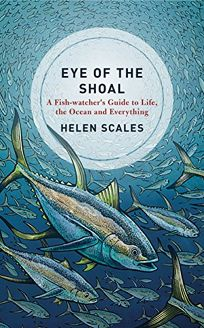 Eye of the Shoal: A Fishwatcher's Guide to Life