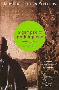 Glimpse of Nothingness