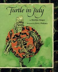 Turtle in July