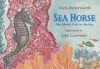 Sea Horse: The Shyest Fish in the Sea