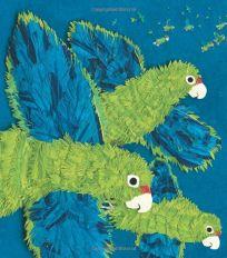 Parrots Over Puerto Rico