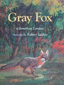 Gray Fox: 9