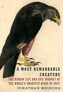 A Most Remarkable Creature: The Hidden Life and Epic Journey of the World's Smartest Birds of Prey