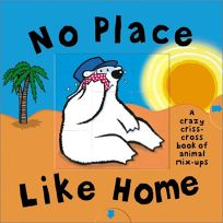 No Place Like Home: Criss Cross Book of Opposites