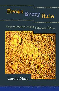 Break Every Rule: Essays on Language