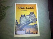Owl Lake
