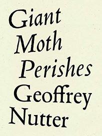 Giant Moth Perishes