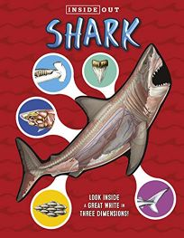 Inside Out Sharks: Look Inside a Great White in Three Dimensions!