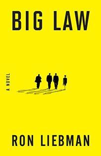 Fiction Book Review The 13th Juror By John Lescroart Author Dutton Books 2295 480p ISBN 978 1 55611 402