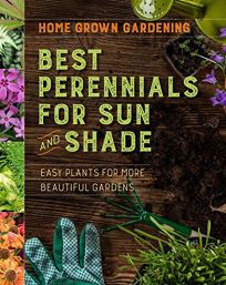 Best Perennials for Sun and Shade: Easy Plants for More Beautiful Gardens