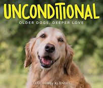 Unconditional: Older Dogs
