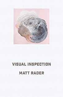 Visual Inspection