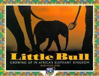 Little Bull: The Story of Little Bull