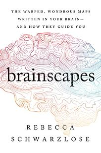 Brainscapes: The Warped