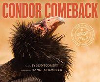 Condor Comeback Scientists in the Field