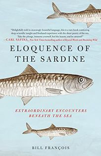 Eloquence of the Sardine: Extraordinary Encounters Beneath the Sea