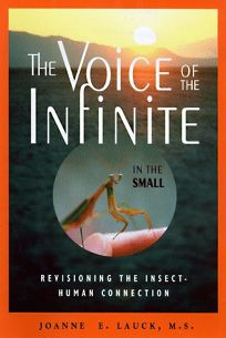 The Voice of the Infinite in the Small: Reimaging the Human-Insect Connection