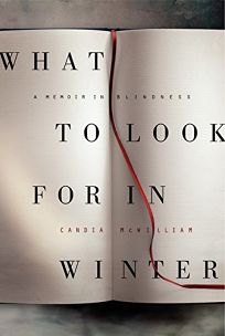 What to Look for in Winter: A Memoir in Blindness