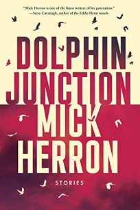 Dolphin Junction: Collected Stories