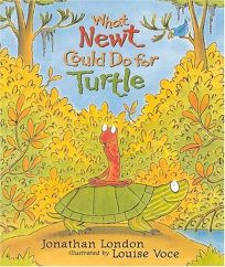 What Newt Could Do for Turtle