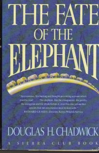 The Sch-Fate of Elephnt