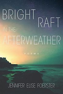 Bright Raft in the Afterweather: Poems
