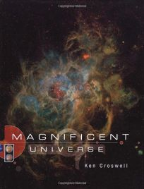 Magnificent Universe Ibs583618
