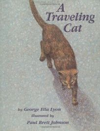 A Traveling Cat