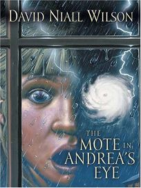 The Mote in Andreas Eye