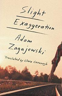 Slight Exaggeration: An Essay