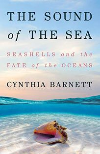 The Sound of the Sea: Seashells and the Fate of the Ocean