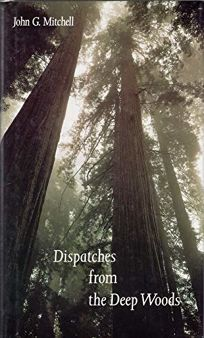 Dispatches from the Deep Woods