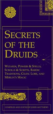 Secrets of the Druids: Wizards