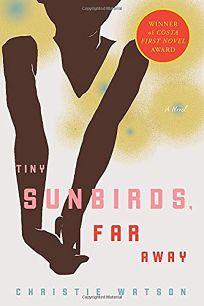 Tiny Sunbirds