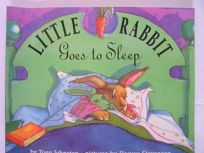 Little Rabbit Goes to Sleep