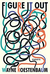 Figure It Out: Essays