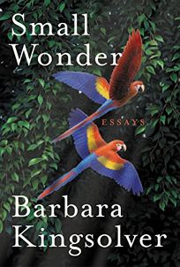 nonfiction book review  small wonder  essays by barbara kingsolver    buy this book