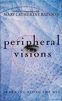 Peripheral Visions: Learning Along the Way